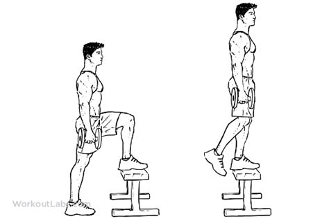Dumbbell Step-Up | Illustrated Exercise guide - WorkoutLabs