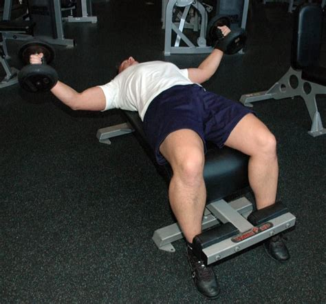 Stubborn Muscle Hypertrophy Workouts (Chapters 1-3)