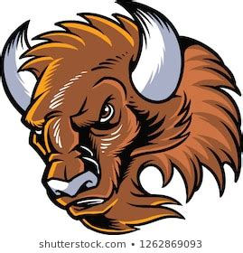 Angry Bison Images, Stock Photos & Vectors | Shutterstock