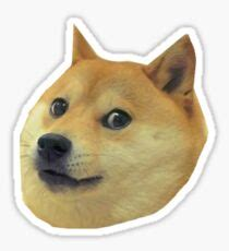 Doge: Stickers | Redbubble