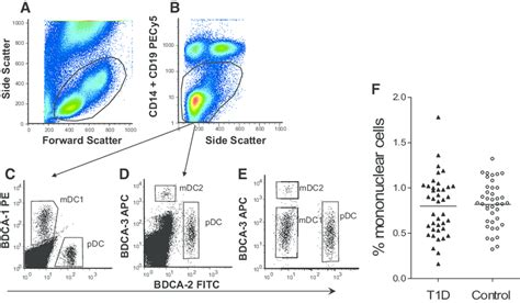 Example of flow cytometry analysis and gating strategy for