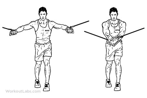 Standing Cable Crossover Press / Flyes – WorkoutLabs