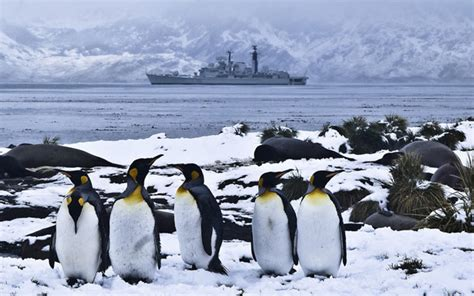 Falkland Islands: timeline of tensions since the war