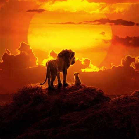 Wallpaper The Lion King, Animation, 2019, HD, Movies