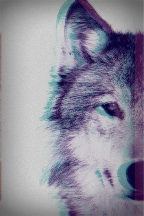 3D Wolf Pictures, Photos, and Images for Facebook, Tumblr