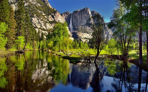 Summer Landscape View To The Merced River Yosemite