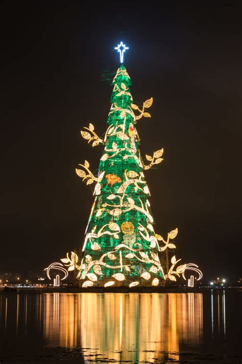 Top ten Christmas trees in the world - Photo 6