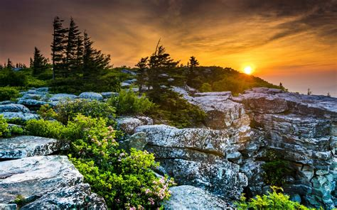 Scenery Usa Sunrises And Sunsets Stones West Virginia Fir