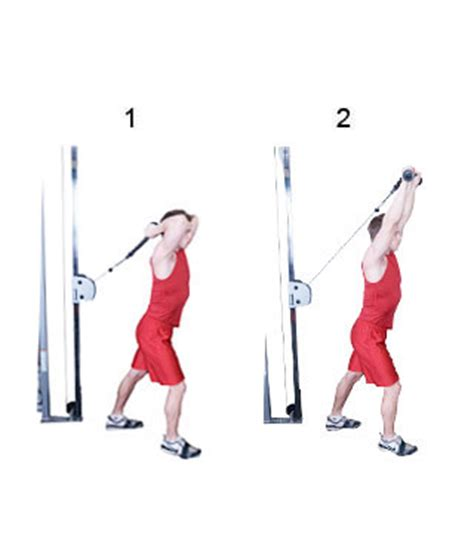 Cable Triceps Overhead Extension - Fitness-Oefeningen