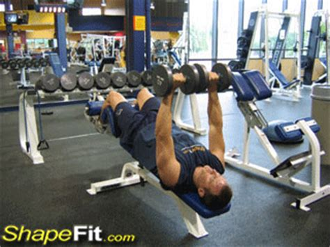 Decline Dumbbell Bench Press - Chest Exercise Guide