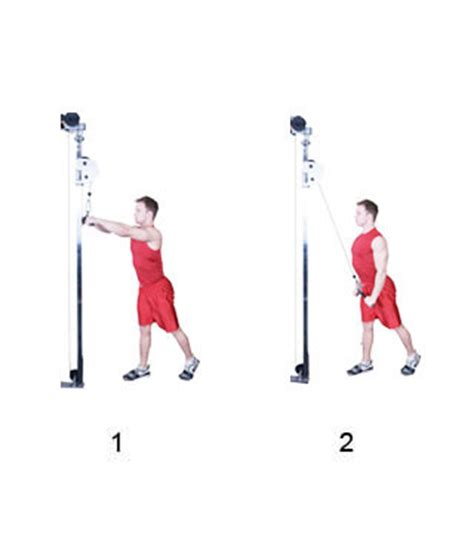 Cable Straight Arm Pull-Down - Fitness-Oefeningen