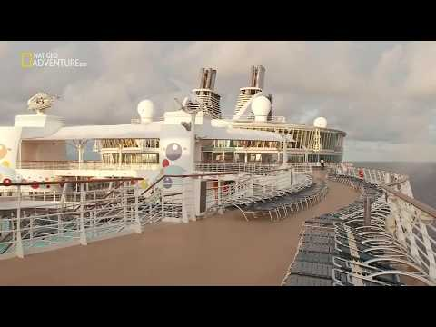 How do cruise ships stay afloat? Mind-blowing phenomenon